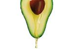 Avocado - Persea Gratissima (avocado) Oil