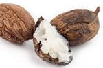 Shea Butter oder Karité-Butter - Butyrospermum Parkii Butter