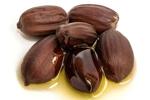 Jojoba - Simmondsia Chinensis (jojoba) Seed Oil
